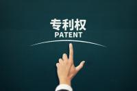 專利權授予的條件